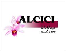 Alcici